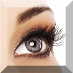 Eyelash Extensions by Organic Infusion Hair and Nail Salon